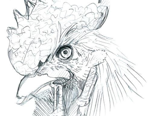 February 2017 Sketch Dump