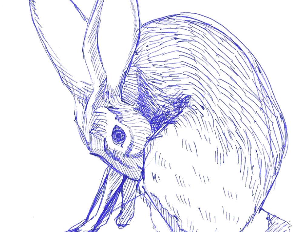 April 2017 Sketchdump