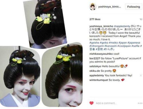 A Gift for A Geisha & Clematis Kanzashi Hairpins